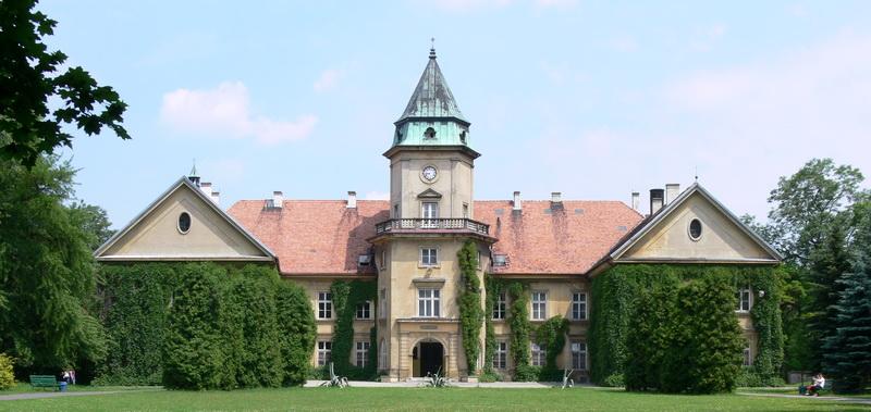 Tarnobrzeg_-_Tarnowski_Castle_in_Dzikow