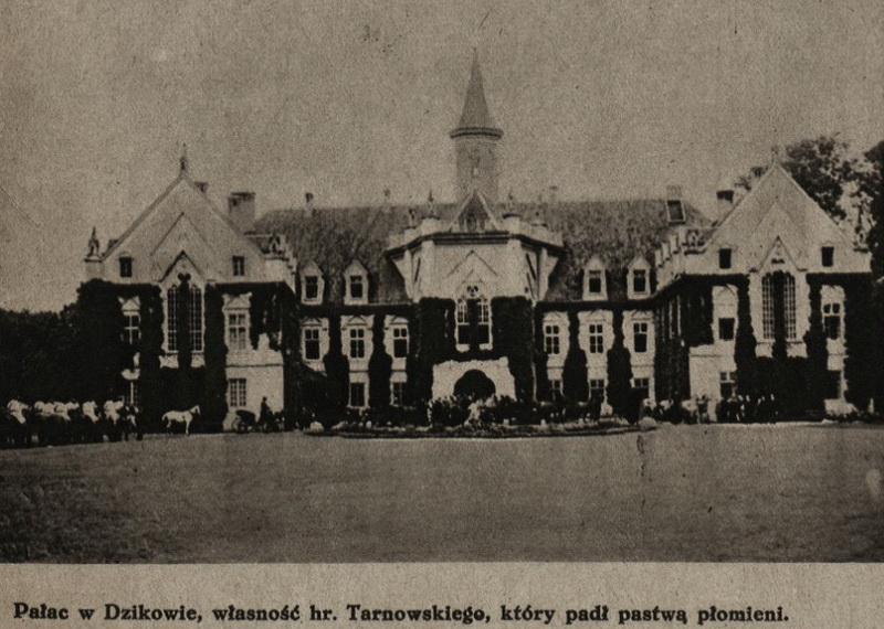 Tarnowski, Dzików - 1928 Pałac