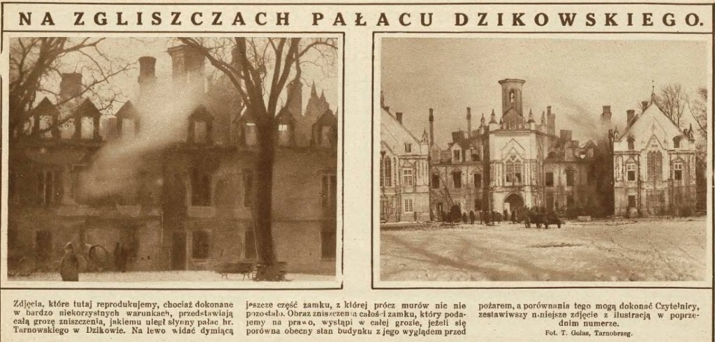 Tarnowski, Dzików - 1928