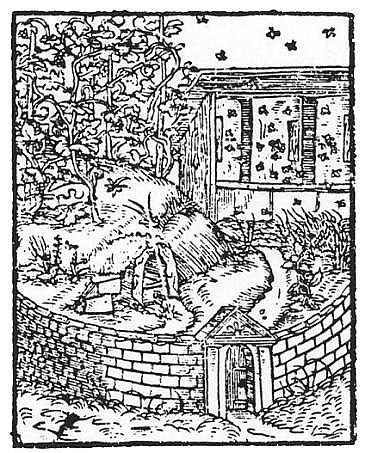 winnica3 Ilustracja zM. Siennik, Herbarz, Kraków 1568