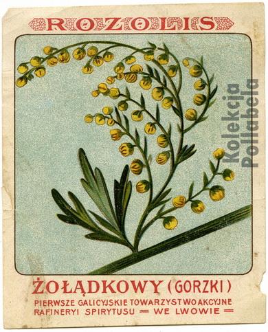 Mikolasz - Rosolis Żołądkowy2