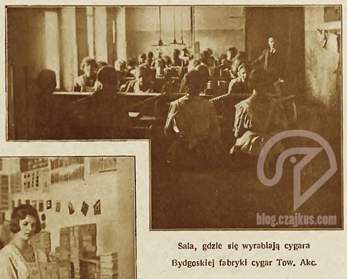 Bydgoska Fabryka Cygar9