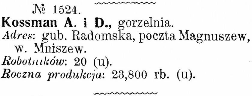 1904 - Mniszew2