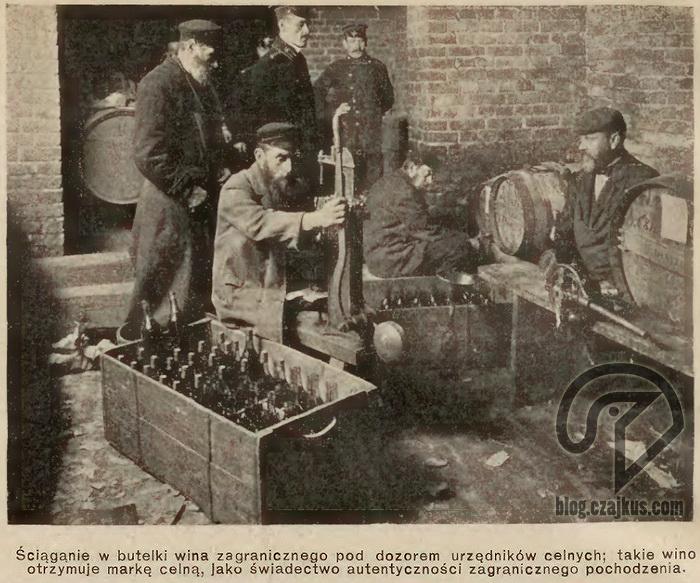 1909 Wino Cło1W