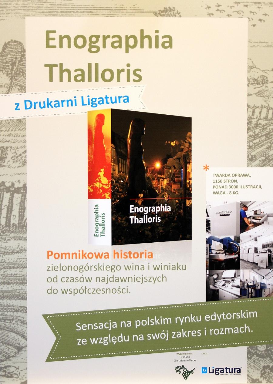 Enografia Thalloris - plakat