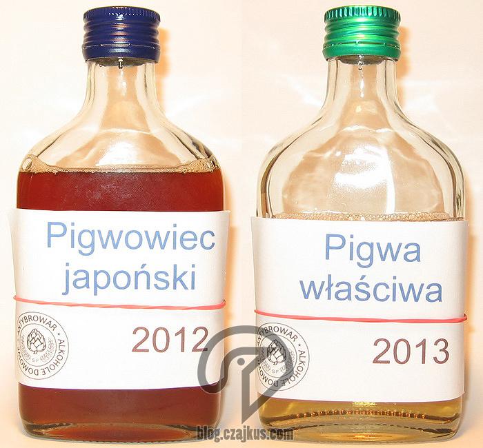 panta_rei Pigwowiec 2012 iPigwa 2013